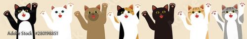 Tuinposter Kat 笑顔の猫