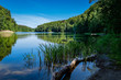 Südende des Gamensees am 66-Seen-Wanderweg im Landschaftsschutzgebiet Gamengrund