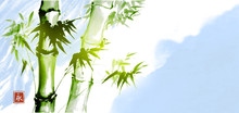 Green Bamboo On Blue Sky Background. Traditional Japanese Ink Wash Painting Sumi-e. Sign - Eternity.