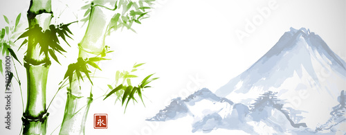 Green bamboo and far blue mountains on white background Fototapeta