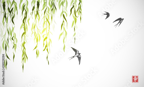 Fotografie, Tablou Flying swallow birds and green willow branches on white background