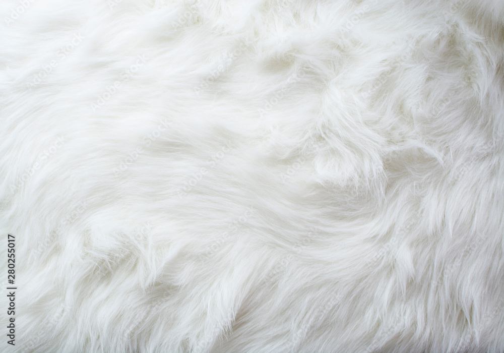 Fototapeta Fur, White Color, Rug, Textured, Fluffy, Backgrounds, Elegance, Softness, Fake Snow, Horizontal, Manufactured Object, Photography