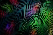 Tropical Pattern With Leaves O...