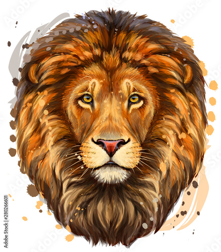 Lion Wallpaper Mural