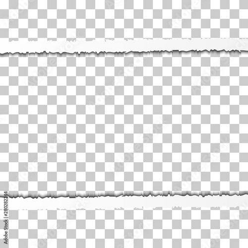 Straight Snatched Ripped Paper Border with Shadows Isolated on Transparent Background. Realistic Horizontal Paper Edge Wall mural