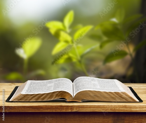 Open book on old wooden table. Wall mural