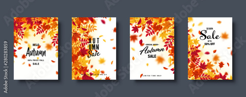 Fotografie, Obraz  Autumn falling leaves