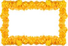 Cempasuchil Flower Frame, Mexi...