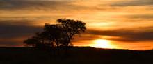 Sunset At Etosha National Park...