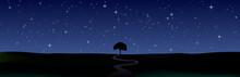 星空の地平線 一本の木と一本の曲がりくねった道