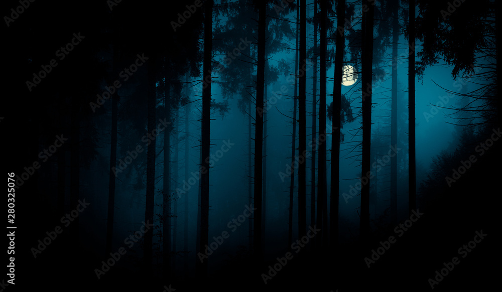 Fototapety, obrazy: Full moon through the spruce trees in magic mystery night foggy forest. Halloween backdrop.