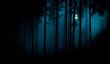 Leinwanddruck Bild - Full moon through the spruce trees in magic mystery night foggy forest. Halloween backdrop.