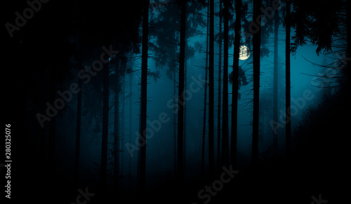 Foto op Aluminium Herfst Full moon through the spruce trees in magic mystery night foggy forest. Halloween backdrop.