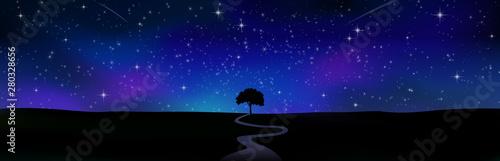 Photo sur Toile Violet 星空の地平線 一本の木シルエット