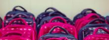 School Bags In School Concept