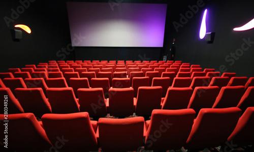 Salle de Cinéma Canvas Print