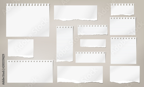 Obraz Set of torn white note, notebook lined and blank paper pieces stuck on light brown background. Vector illustration - fototapety do salonu