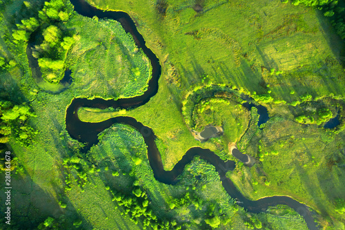 Canvas Print Ecology and environment concept