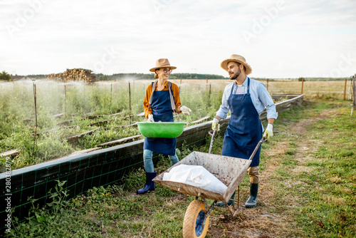 Fotomural  Two well-dressed farmers walking with pushcart and green busket on the farmland for growing snails