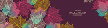 Autumn  Background With Maple Leaves. Nature Banner. Frame With Plants. Bright Template
