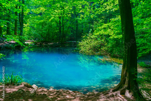 Recess Fitting Green Ochiul Beiului, a small emerald lake on the Nera gorge in Beusnita National Park in Romania