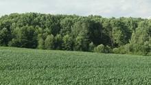 Aerial Nature Landscape Beauti...