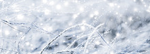 Winter Holiday Background, Nat...