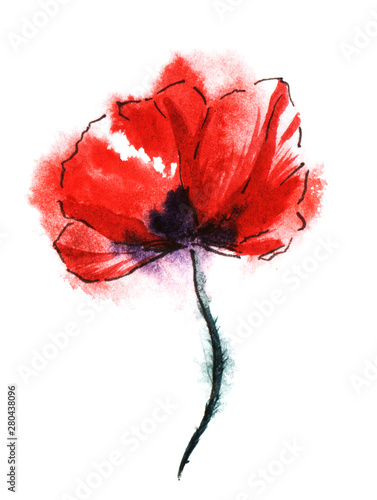 Colorful red poppy flower on black stalk isolated on white background. Watercolor hand drawn painting on paper texture. Brush stroke floral illustration with wet ink effect.