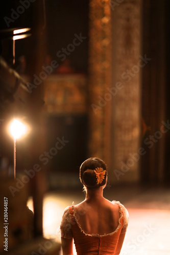 Carta da parati  Ballerina in costume is standing backstage, waiting for the stage