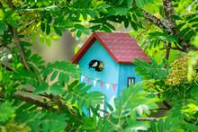 Bird Feeding His Chicks In A Birdhouse