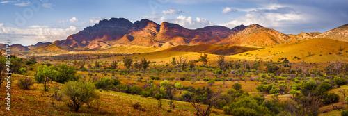 Obraz na plátně Flinders Glory