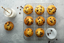 Chocolate Chip Muffins With Milk Overhead View On A Cooling Rack