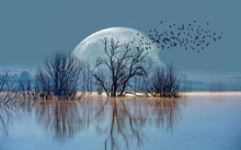 """A Silhouette Of Birds With Lone Dead Tree And Full Moon """"Elements Of This Image Furnished By NASA """""""