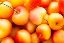 Yellow Cherries Food Background. Close Up Of Fresh Ripe Yellow Rainier Cherries. View From Above