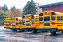 Row Of School Buses Aligned An...