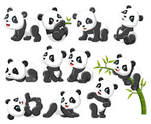 Collection Of Happy Panda With...