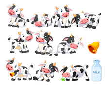 Collection Of Cute Cow With Va...