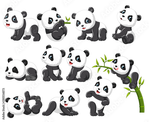 Fotografie, Obraz  Collection of happy panda with various posing