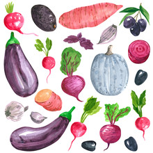 Different Purple, Pink, Blue Vegetables Clipart Set, Sweet Potato, Eggplant, Radish, Beetroot, Hand Drawn Watercolor Illustration Isolated On White. Halloween Symbol