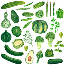 Different Green Vegetables Clipart Set, Pumpkin, Broccoli, Cabbage, Cucumber, Avocado, Hand Drawn Watercolor Illustration Isolated On White. Halloween Symbol