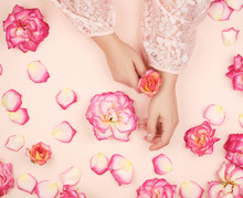 Female Hands With Smooth Skin, White Background With Pink Rosebuds