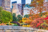 Fototapeta Nowy Jork - Central Park, New York City Autumn