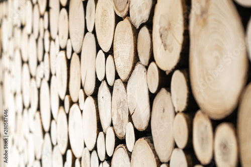 Garden Poster Firewood texture Wood texture or wood background. Wood for interior exterior decoration and industrial construction concept design. Natural wood texture