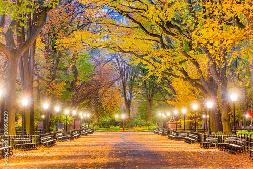 Canvas Print Central Park New York City Autumn