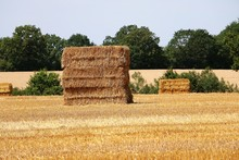 Stack Of Large Bale Of Straw On A Sunny Day