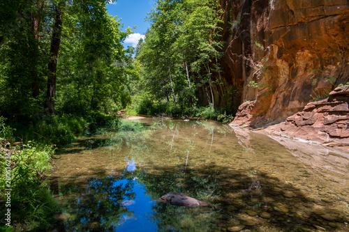 Peaceful scene of a clear, still stream reflecting a lush green forest in a red Poster Mural XXL