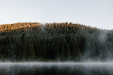 Fog Over Forest And Lake