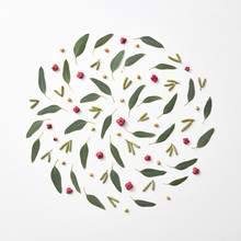 Natural Pattern In The Form Of A Circle Of Buds, Berries And Green Leaves On A Gray Background With Copy Space. Natural Layout. Flat Lay