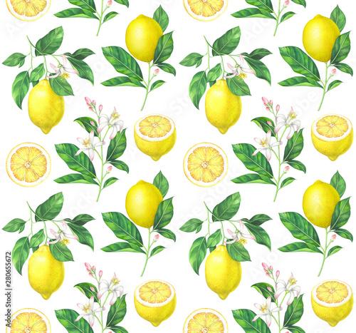 Watercolor lemon pattern on white background Tableau sur Toile
