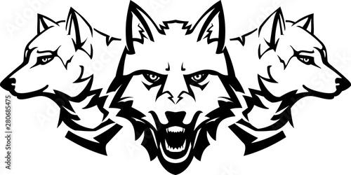 Fotografie, Obraz White Wolfpack Line Art